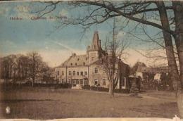Flostoy - Château De Doyon (colorisée, Edit Pirlot-Laloux) - Havelange