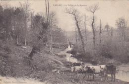 CPA CALLAC LA VALLEE DE LA BOISSIERE - Guingamp