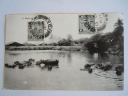 Malaya Malaisie A Herd Of (baffalo) Buffalo Used 1937 Stamp Negri Sembilan 1c Yv 20 - Malesia