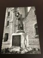 Ardooie - Ardoye - Standbeeld Mgr Roelens - Echte Foto - Uitg. Drukkerij De Burghgraeve - Ardooie
