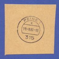 Tagesstempel - 315 PEINE 1, C, 19.-8.81 - Machine Stamps (ATM)