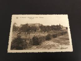 Beernem : Sint-Amandusgesticht, Broeders Van Liefde : Boomgaard  - Foto J. Buyens - Beernem