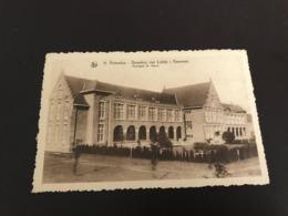 Beernem : Sint-Amandusgesticht, Broeders Van Liefde : Paviljoen H. Maria   - Foto J. Buyens - Beernem
