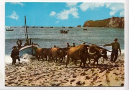 NAZARE, Portugal, Arrasto Dos Barcos, Pulling Of The Boats, Unused Postcard [23718] - Portugal