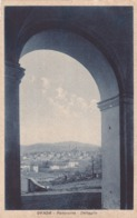 CARTOLINA - ALESSANDRIA - OVADA - PANORAMA - DETTAGLIO - Alessandria