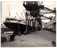 """Le Havre (76) - Photo Ancienne Du Bateau """"Orégon"""" à Quai Devant Les Entrepôts. Bon état. - Fotos"""