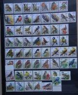 BELGIE   Samenstelling  Vogels  BUZIN   ( Zonder 2698)   In Bfr.  Zie Foto   Postfris **   Fac. Waarde 398 Bfr. - 1985-.. Oiseaux (Buzin)