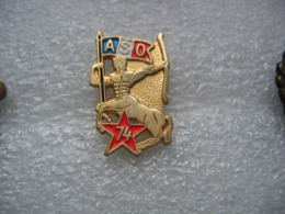 Pin's Militaire, ASO 74, Drapeau Francais - Militaria