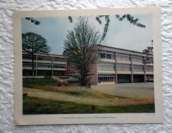 Groupe Scolaire Léonard De Vinci Châtenay Malabry - Extrait D'un Dossier De Documentation Pédagogique  1957 - 27 X 21 Cm - Andere