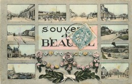 80* BEAUVAL  Multivues                     MA97,0014 - Beauval