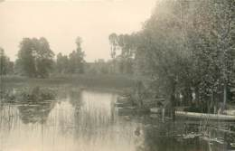 80* AILLY SUR SOMME         Etangs             MA97,0095 - Ailly Le Haut Clocher