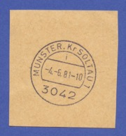 Tagesstempel - 3042 MUNSTER Kr. SOLTAU, I, -4.-6.81 - Marcophilie - EMA (Empreintes Machines)
