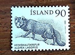 ISLANDE, Canidés, RENARD, Yvert N0 504 ** MNH - Stamps