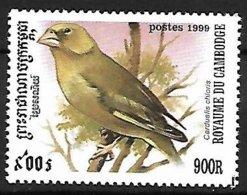 CAMBODIA - 1999 - MNH :   European Greenfinch -   Chloris Chloris - Pájaros Cantores (Passeri)