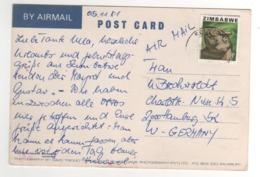 "Beau Timbre , Stamp ; "" Rhinocéros "" Sur Cp , Carte , Postcard Du 05/11/1981 - Zimbabwe (1980-...)"