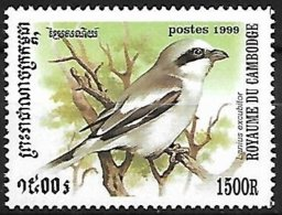 CAMBODIA - 1999 - MNH :   Great Grey Shrike  -  Lanius Excubitor - Pájaros Cantores (Passeri)