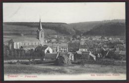 Postkaart Hamoir - Panorama ( Edit. Brisbois-Lhoest )  Met Frankering RIJKSWAPEN ; Staat Zie 2 Scans ! - Hamoir