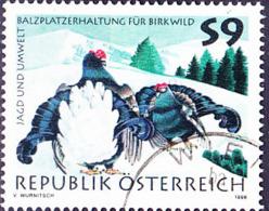 Österreich Austria Autriche - Balzende Birkhühner (Tetrao Tetrix)  (MiNr: 2244) 1998 - Gest Used Obl - 1945-.... 2nd Republic