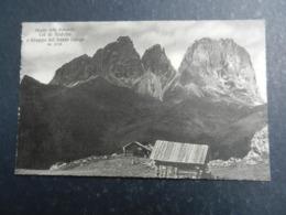 20013) STRADA DELLE DOLOMITI COL DI RODELLA E GRUPPO DEL SASSOLUNGO NON VIAGGIATA - Bolzano (Bozen)