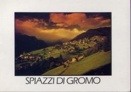 Spiazzi Di Gromo - Bergamo - Formato Grande Viaggiata – E 14 - Bergamo