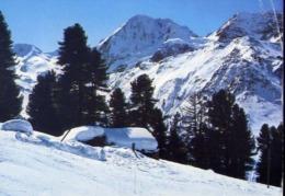 Solda - Bolzano - Gruppo Ortles - Il Gran Zebrù - Formato Grande Viaggiata – E 14 - Bolzano (Bozen)