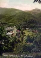 Lurisia - Cuneo - Panorama - Formato Grande Viaggiata – E 14 - Cuneo