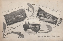 SALUTI DA SALTO CANAVESE - Other