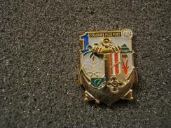 RARE INSIGNE PINS REGIMENT DES TROUPES DE MARINE A IDENTIFIER OPEX DAGUET GUERRE DU GOLFE 1990 FAB LUXE SHELI - Militaria