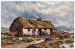 ARTIST CARD : E. LONGSTAFFE - ROUNDWOOD, AN IRISH CABIN (TUCK'S OILETTE) / POSTMARK - WEMBLEY / ADDRESS - BINGLEY - Dublin