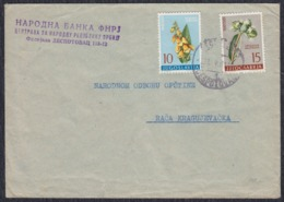 Yugoslavia 1961 Letter Sent From Despotovac To Raca Kragujevacka - 1945-1992 Sozialistische Föderative Republik Jugoslawien