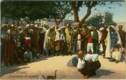 AFRICA - LIBIA / LIBYA - SNAKES CHARMER / INCANTATORE DI SERPENTI - EDIZ. COMETTO - FOTO LEHNERT & LANDROCK 1910s (5610) - Libia