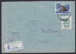 Yugoslavia 1963 Registered And AR Letter Sent From Vrsac To Alibunar - Briefe U. Dokumente