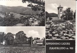 611 - Pianpaludo - Italy