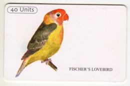 TANZANIE Ref MV Cards : TAN-TT-15 FISHER'S LOVEBIRD 40 UNITS - Tanzania