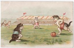 ANIMAUX. CHATS HUMANISES. CHATS JOUANT AU FOOTBALL. - Katten