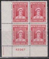 NEWFOUNDLAND Scott # 255 MNH Block Of 4 - Queen Elizabeth With Cutting Guide - 1908-1947