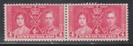 NEWFOUNDLAND Scott # 231 MNH Pair - KGVI Coronation - 1908-1947