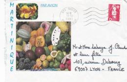 FRANCE 2001 De MARTINIQUE à Lyon Sur Marianne Bicentenaire, Non Dentelé, 2 Bandes, Valeur D - France