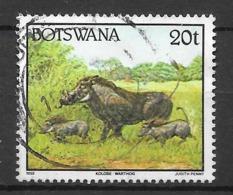 Kolobe - Warthog. N°668 Chez YT. (Voir Commentaire) - Botswana (1966-...)