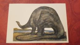 Brontosaurus Dinosaur  - Rare Old Soviet Dinosaur Serie - Old USSR Postcard 1969 - Altri