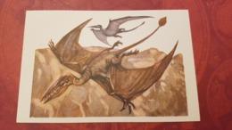 Rhamphorhynchus Pterosaur  - Rare Old Soviet Dinosaur Serie - Old USSR Postcard 1969 - Altri