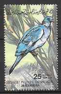 Domestic Dove (Columba Livia Domestica). N°1150 Chez YT. (Voir Commentaire) - Swaziland (1968-...)