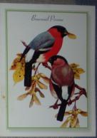 Petit Calendrier De Poche 2010 Oiseau Bouvreuil Pivoine - Pharmacie  Lyon - Calendars