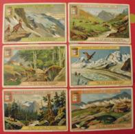 6 Chromo Liebig : Les Six Zones D'altitude. 1914. S 1108. Chromos - Liebig