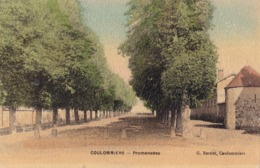 COULOMMIERS - Promenades - Coulommiers