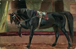 AK Pferd / Horse / Cheval, Um 1907 (31919) - Chevaux