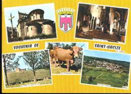 Souvenir De Saint Urcize - Francia