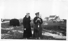 RARE BRIGNOGAN FILAGE DE LAINE PHOTO ORIGINALE FORMAT 11 X 6.50 CM - Lugares