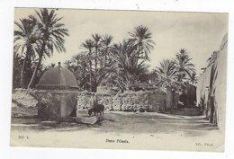 CPA - Algérie - Dans L'Oasis - Une Fontaine - Scenes
