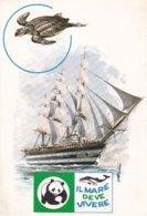 CIVITAVECCHIA - ROMA - NAVE SCUOLA VESPUCCI - CROCIERA ECOLOGICA 1978-TARTARUGA / TESTUGGINE / TORTUGA / TURTLE / TORTUE - Civitavecchia